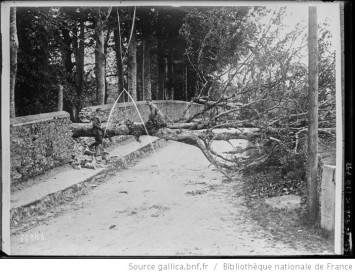 En Irlande les Sinn Feiners font sauter les arbres pour obstruer la route Auteur : Agence Rol. Date d'édition : 1921 Archives BNF