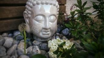02.un jardin zen jpg