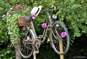 Cathy Gilbrin VERNEUIL SUR AVRE - Vélo de Jardin